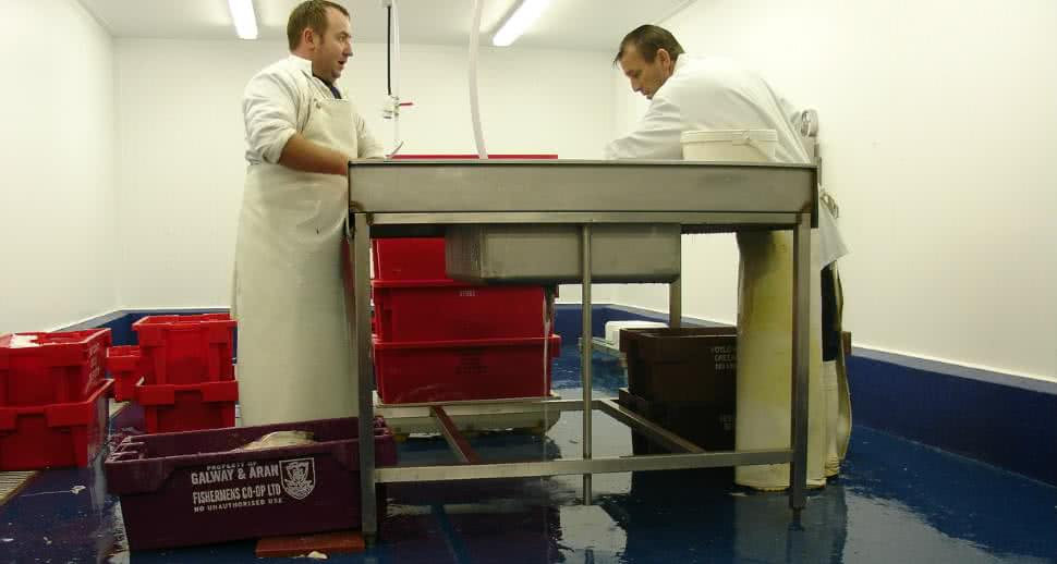 hygienic flooring for fish facility