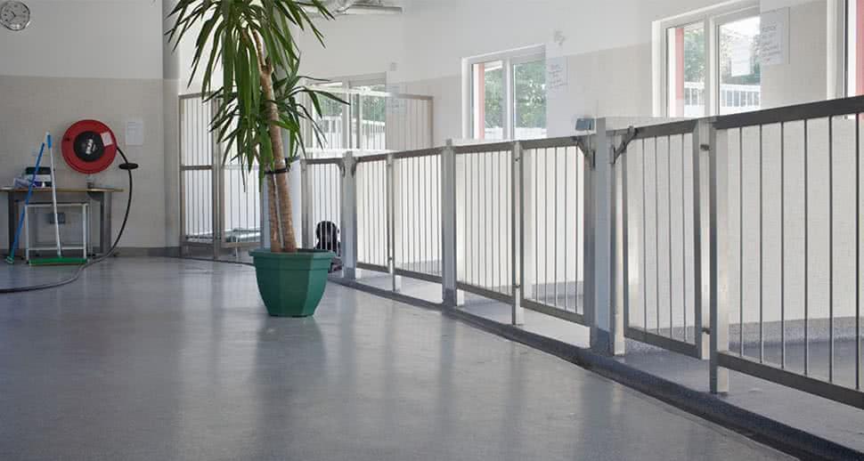 Dog kennel durable flooring